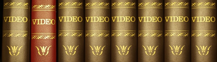 Videoregal