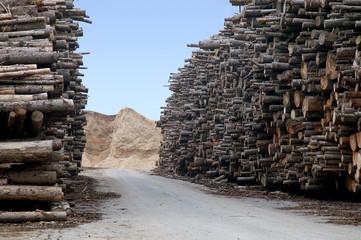 Holzvorrat für Biomasse