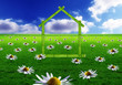 green house and daisies
