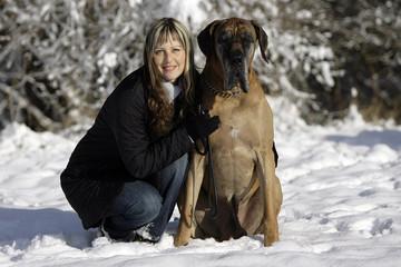 Gelbe Dogge mit Frau im Schnee