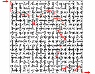Labyrinthe 55x55 et sa solution