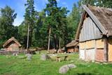 Vikings village poster