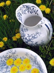 Classic wash basin and jug in meadow