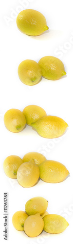 A series of lemons isolated on white