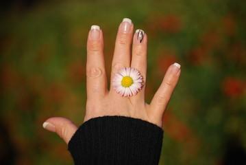 Main droite d'une femme ornée d'une paquerette