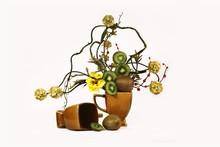 Ikebana i jagody kivi