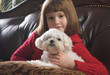 Young Girl with Her Maltese