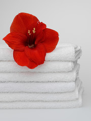 White towels with a flower on a white background