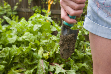 Woman with dirty trowel tending to garden