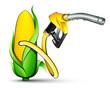 Concept énergie bio