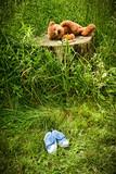 Little stuff teddy bear laying on an  tree stump poster