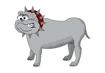 BullDog Cartoon - Isolated On White