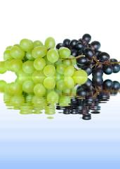 Weintrauben 5.3