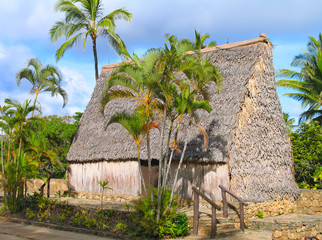 South Pacific island hut