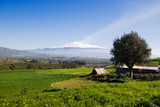 rural landscape and snowy volcano etna poster
