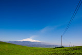 green meadow on background volcano Etna poster