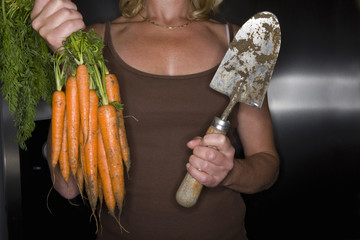 Close up of woman holding fresh carrots and garden trowel
