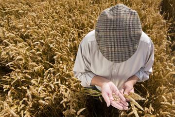 Farmer examining crop