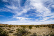 Desert View 4