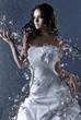 bride on blue background