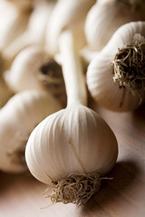 fresh garlic background (shallow DOF)