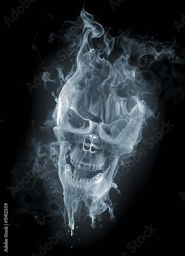 Foto op Canvas Rook Skull - smoke