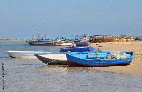 Tuinposter Algerije Port de pêche