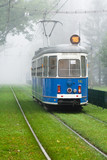 Tram in the green grass - Krakow,Poland, Europe
