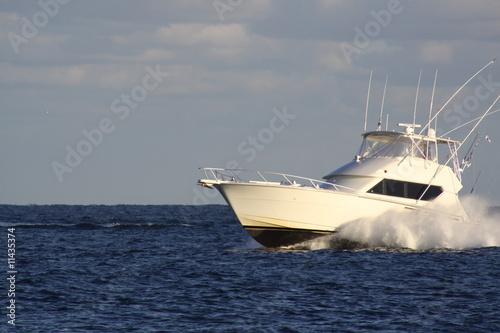Cabin Cruiser - 11435374