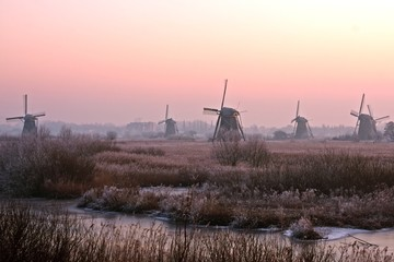 Winmills at the Kinderdijk in the Netherlands at sunset