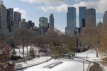 Snow on the Central Park