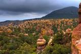 Chiricahua Mountains poster