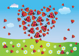 Heart of summer from ladybirds