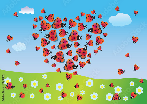Foto op Canvas Lieveheersbeestjes Heart of summer from ladybirds