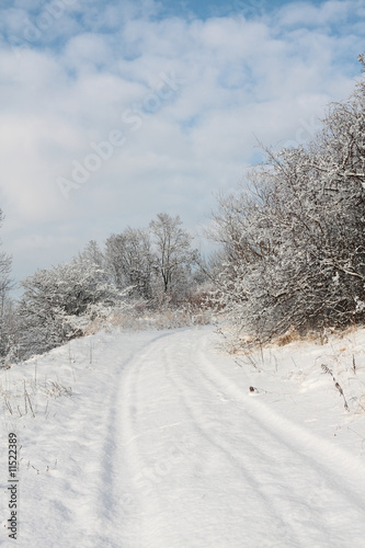 White winter road