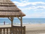 Solitude sur la plage poster