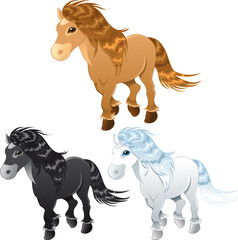 three horses or pony
