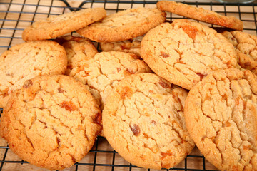 Buttery, Brittle, Candy Bit Cookies