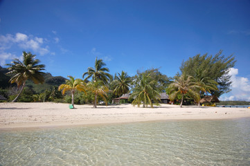 White sand beach, Moorea, French Polynesia