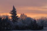 alba sulla neve poster
