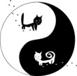 cats. Ying and Yang.
