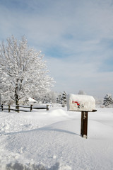 Snow Covered Mailbox