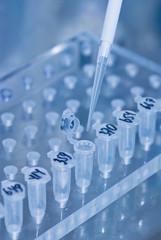 research in laboratory