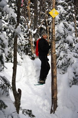 winter sport / snowshoes in Quebec