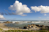 Cape Agulhas, South Africa. poster