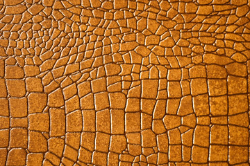 Brown snakeskin or crocodile texture for background