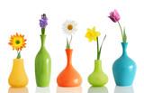 Fototapety Spring flowers in vases