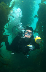 Underwater Photographer in Catalina Vertical