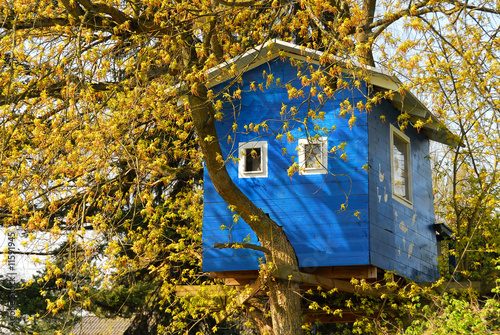 Leinwandbild Motiv Baumhaus