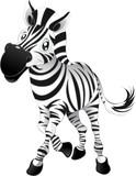 Fototapety Baby Zebra